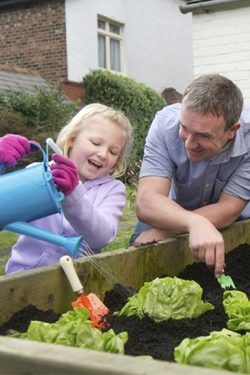 Young girl watering vegetable garden with an adult